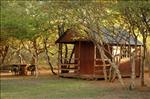 Safarilands Camp Mabula, Safari lands Game Reserve, Limpopo, Self Catering, Self Catering Lodge, Self Catering Cabins, Bush Cabins, Bush Lodge